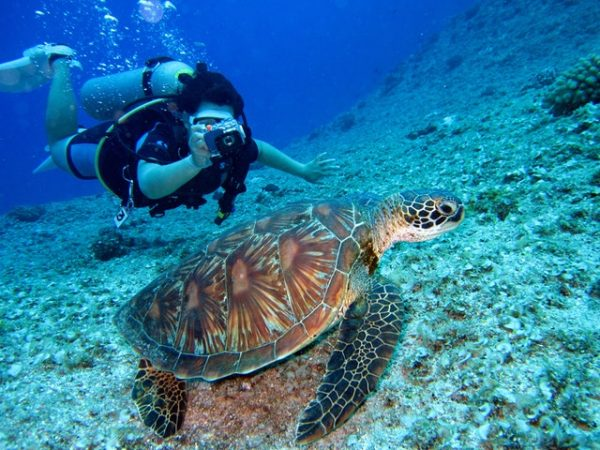 Scuba Diving Is Not All Fun and Games – Make Sure to Take These Cautions into Consideration