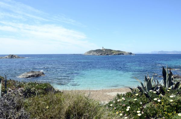 St Tropez Yacht Charter: Snorkeling for Sea Life